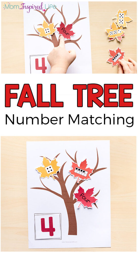 Fall tree number matching activity for preschool and kindergarten. A great way to teach number sense this fall! Fall math centers.