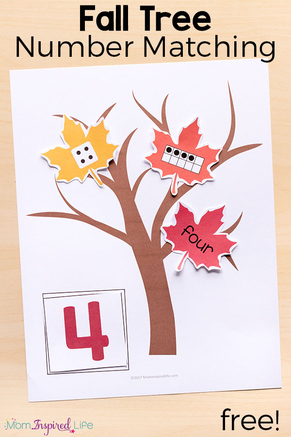 This fall tree number sense matching activity is perfect for kids in preschool and kindergarten. It is a fun way to learn number sense this fall!