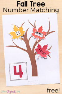 Fall Tree Number Sense Matching Activity