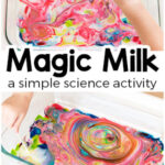 Exciting Magic Milk Science Experiment for Kids