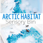 Arctic Sensory Bin for Winter