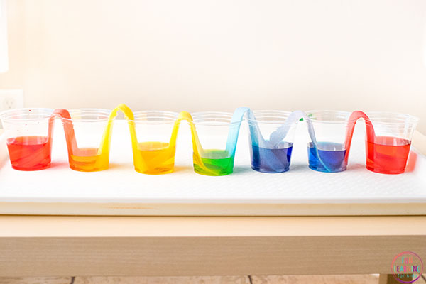 This walking water experiment teaches kids about color mixing and capillary action.