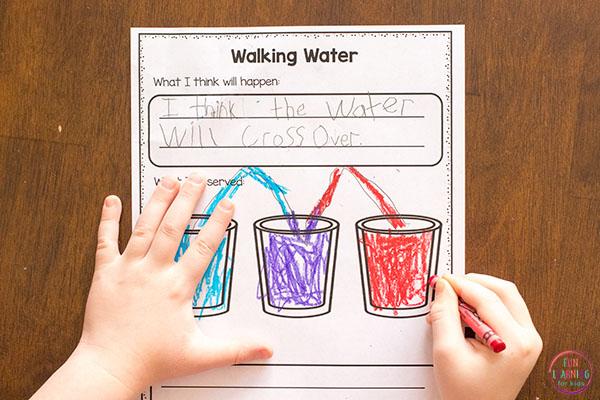 Walking water science recording sheets.