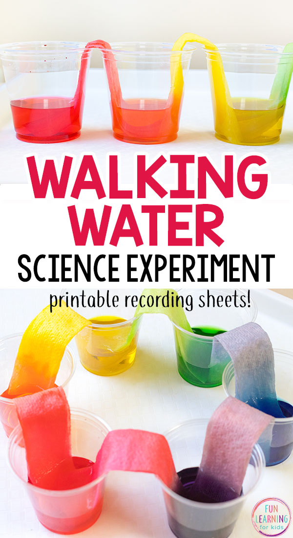 Walking water science experiment that is so much fun! This rainbow science activity is super cool!