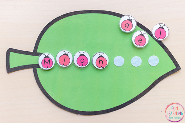 Ladybug name activity.